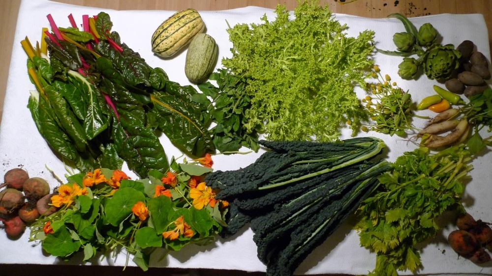 Historische Groentehof groenten-P1080052