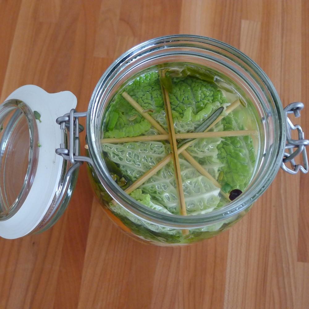 Bloemkool fermenteren-afdekking-L1040724