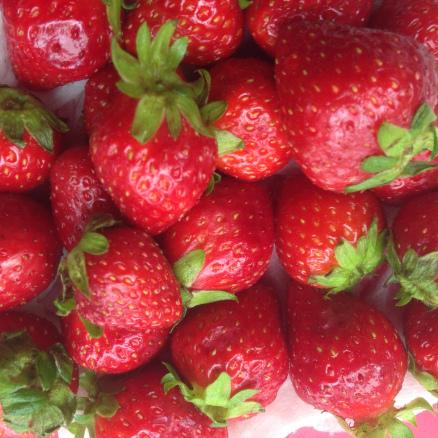 Aardbeien-img_7620