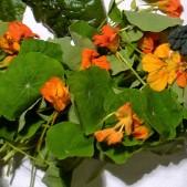 historische-groentehof-groenten-p1080052 (2)