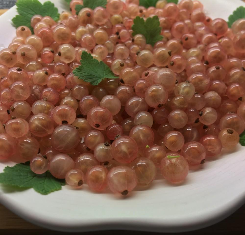 Abrikozen in roze bessen gelei_IMG_6541